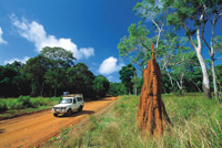 Cape York Tours